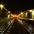 Little River Railway Station - Geelong (Australia)  by peterperfect