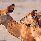 Mother and child 5 by jozi1