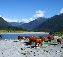 """going home""  mahitahi river, south westland, nz by rina  thompson"