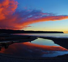 """red""     bruce bay, south westland, new zealand by rina  thompson"