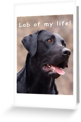 Lab of my life! by John Silver