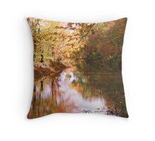 Mahooning in Autumn Throw Pillow