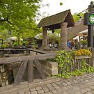 Historic Beer-garden/Biergarten am Hexenhusle, Nuremberg  by Priscilla Turner
