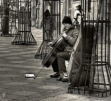Cellist by marcopuch