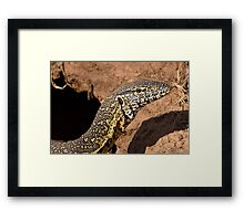 Nile Water Monitor Close Up Framed Print