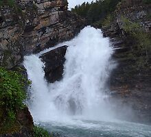 Cameron Falls, Waterton by Jann Ashworth