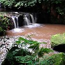 The Glen Waterfall,Kilsyth, Scotland, Taken August 22nd 2010 by Jim Wilson