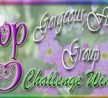 Top 10 Challenge Winner in Gorgeous Flower Cards by Qnita