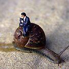 Slow Journey by Mark Wilson