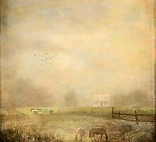 { misty morning farm } by dawne polis