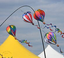 Balloon Fest 2010 by ChereeCheree