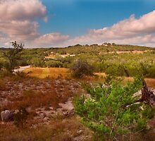 Looking West at Pedernales Falls State Park, Texas by mikeleblanc