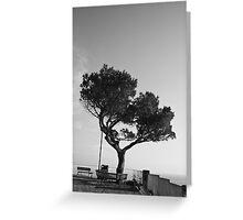 Lonely Tree,Riomaggiore,Italy. Greeting Card