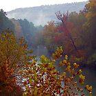 Mulberry River in Fall, Oark, Arkansas by David  Hughes