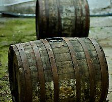 Casks awaiting for the autumn grape-gathering by linaphotography