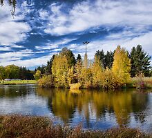 Hawrelak Park in the Fall by Myron Watamaniuk