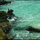 Laguna Cliffs  by Tess Buckler