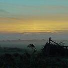 Misty Marsh by SAngell