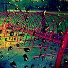 Wet Hayrake by Debbie Robbins