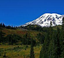 Mt. Rainier and Paradise Inn by Debbie Stika