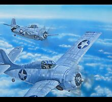 WILDCATS OVER THE SOLOMONS by Wayne Dowsent