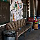 Alley's Country Store by phil decocco