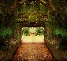 Magic World ©  by Dawn M. Becker