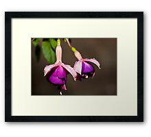 Blooming Wet Framed Print