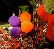 Autumn Colored Balloons by imagetj