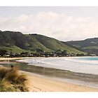 Apollo Bay Beach by Craig Holloway