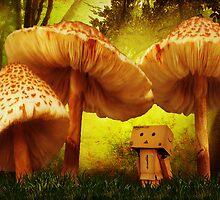 Danbo In Wonderland by Paul Cook