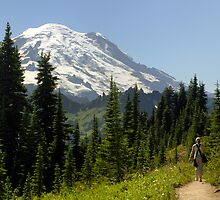 Walking with The Mountain - Mt. Rainier N. P. by Mark Heller