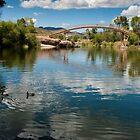 Bridge at Patagonia Lake State Park by Lucinda Walter