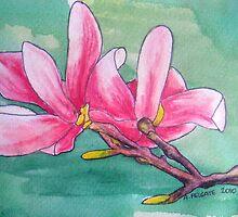Magnolia XII by Alexandra Felgate