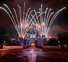 Disneyland by David James