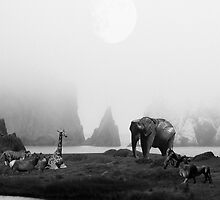The Menagerie in BW by animal-art