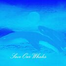 WHALES AND BEAUTIFUL PICTURES AND SOUND, by WHALEGEEK  by ARTIST GINA RUTTLE!! BEAUTIFUL& a wee picture I painted!!!  by Sherri     Nicholas