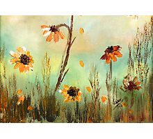 WILD FLOWERS- Acrylic Painting Photographic Print