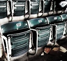 chicago cubs grandstand seats by brian gregory