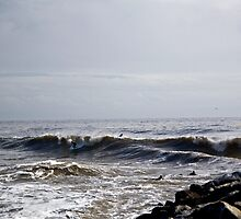 Split Pea Surf by Andrew Simoni