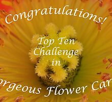 Gorgeous Flower Cards Top Ten Banner by MissyD