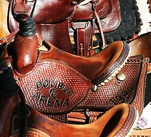 Harmon Family Saddles by Emily Peak