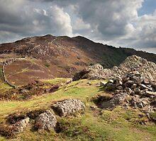 Lingmoor Fell From Side Pike by SteveMG