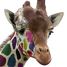 Rainbow Giraffe by wendywoo1972