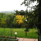 Autumn feeling by Maria1606