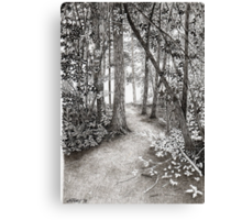PATH TO THE HUDSON Canvas Print