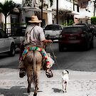 The Dog Walker - Puerto Vallarta by Lynnette Peizer