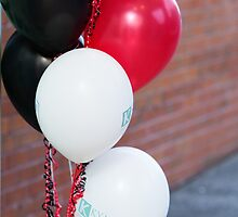 Kymin, Redmayne-Bentley Balloons_9704 by hallphoto