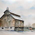 Barn and Horse by jwwalker