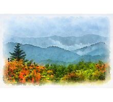 Summer Scene-On Roan Mountain Photographic Print